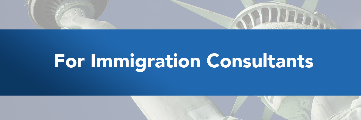 A quick look at the need to hire an immigration consultant